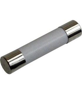 Fusível Vidro 6X32 10A Fusão Rápida Ceramica - 622100GRC