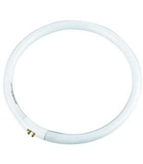 Lampada Circular T5 22W 230V para candeeiro com lupa - MX3062662